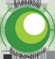 Endoskopiskolen